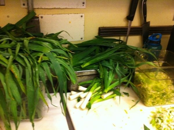 Frontera kitchen: loads of green garlic being prepped for green garlic mojo.