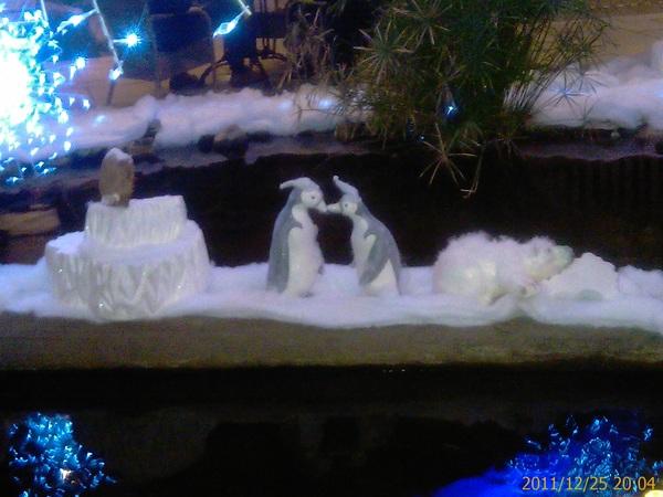 Geen Spitsbergen maar de Lommerbergen bij Venlo, iedereen een vrolijk Kerstfeest! Wel ontluikende liefde :-))