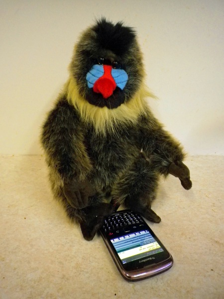 How many folks you know can work a BlackBerry with their FEET??