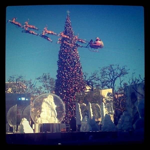 Merry Christmas from The Grove.