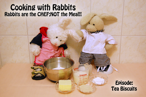 Welcom2 #cookinwifrabbits - Rabbits R da CHEF;NOT da Meal!! Rufus, get ur ear outta my face! We r makin tea biscuits 2day!! #cooking #baking