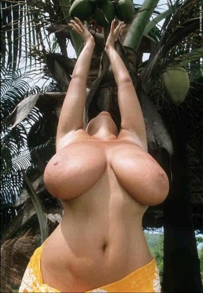 #TittyTuesday