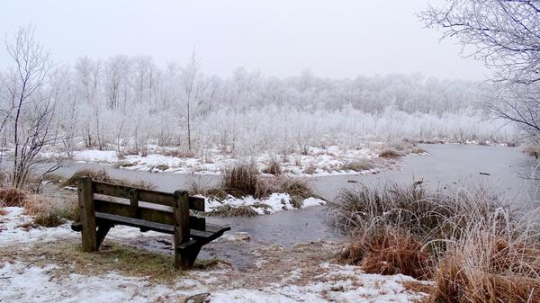 Winterwonderland in Twente #buienradar