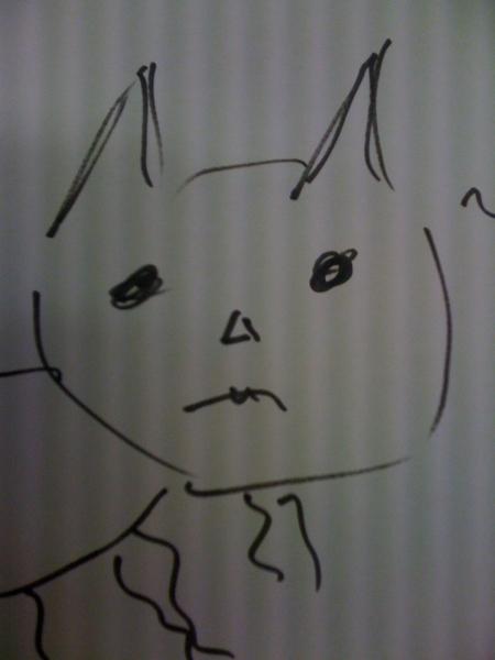 Zomaar een #wonderkat
