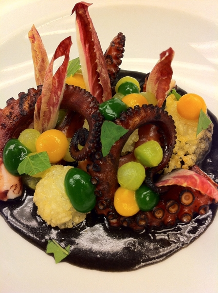 "Tasting possibilities for new Topolo menu w chef Brian Enyart: modern twist on octopus ""en su tinta"""