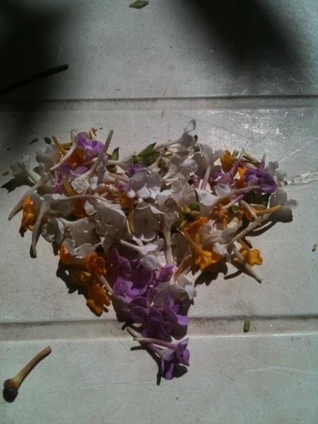 Mi hijo le hizo a @quetiina este corazón de flores.