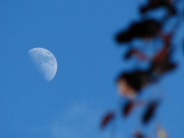 Daytime moon 29/5/12 @newburyastro @badas_tweets  @VirtualAstro  #moonwatch #wonders