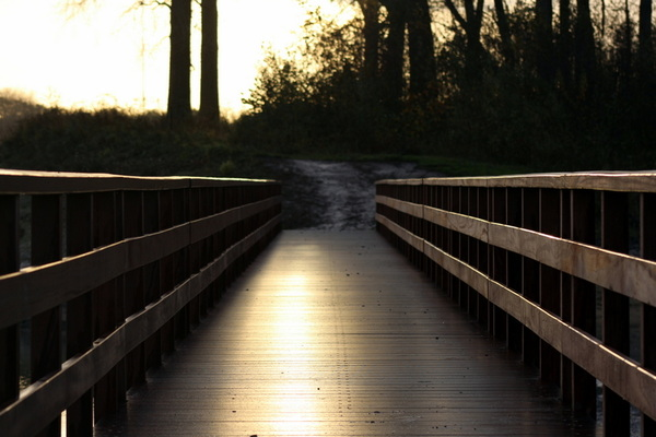 Mooie bruggetjes aangelegd nabij Deventer. Om nog meer te genieten van de uiterwaarden. #buienradar