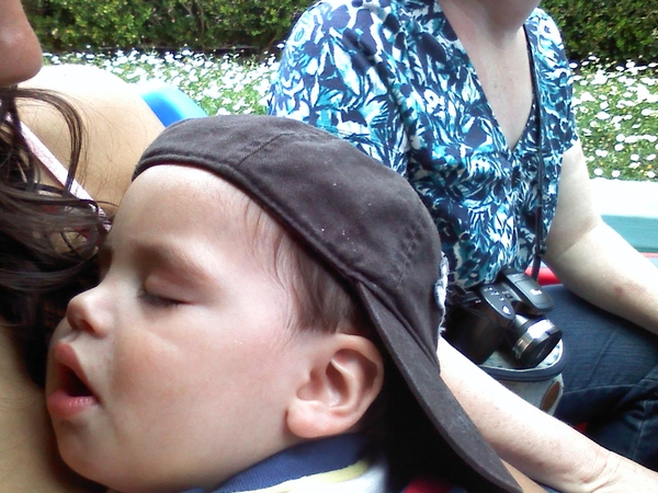 What toby thought of its a small world