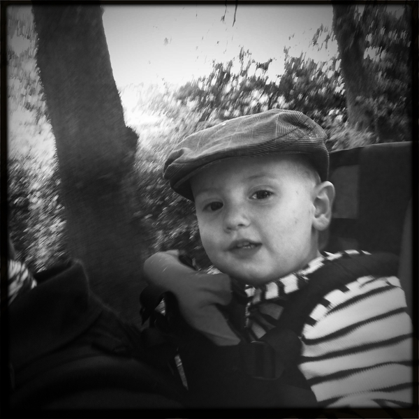 Fletcher of the day: enjoying the ride.