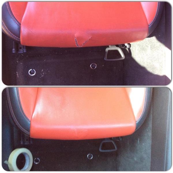 Auto Leather Renew 10