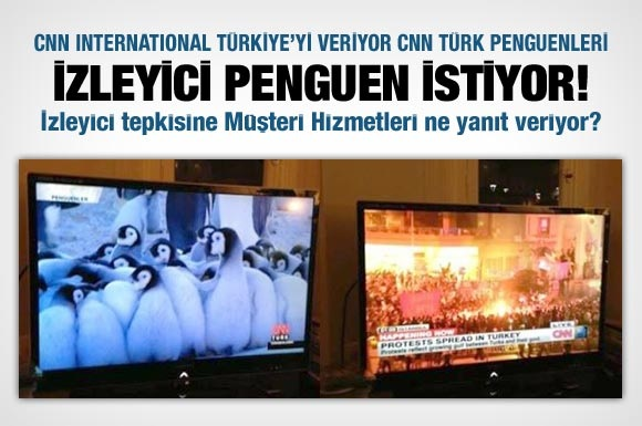 In Turkey, CNN Turk broadcasts a Penguin documentary while CNN covers the #OccupyGezi protests!