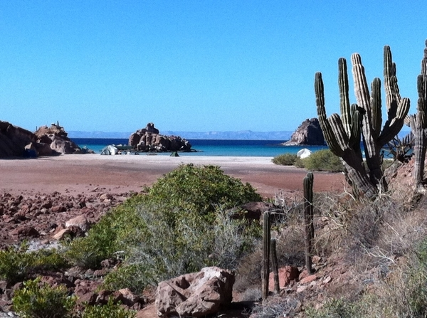 Hi-lites of Baja TV Scout: Espiritu Santo biosphere near La Paz where we'll buy fish and cook on the beach