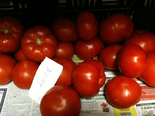 Our first fresh tomatoes of the year!  Beauties from Iron Creek.
