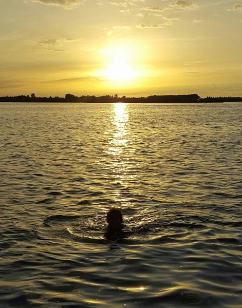 Even zwemmen bij de ondergaande zon #buienradar