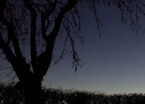 Venus at Nightfall, with 50mm as we perceive it #bbcstargazing