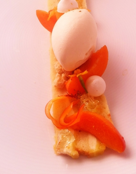 New Topolo menu hilites: layered almond ante (almond pastry cream), Klug farm raw&poached apricots, crema ice crm
