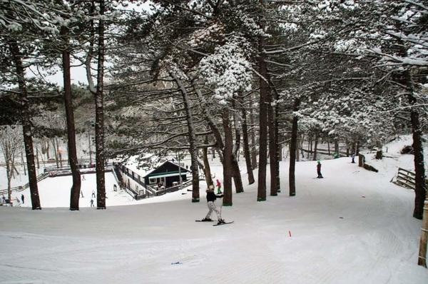 Skiën op echte sneeuw bij ski club Il Primo in Bergen nh #buienradar