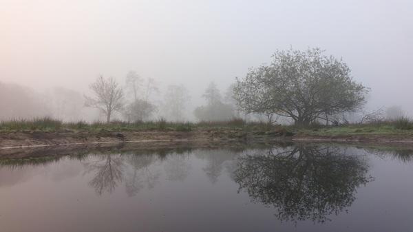 Hier (7:19h) lijkt de zon erdoor heen te komen, maar het zou nog 2 uur duren voordat de mist vertrok. #buienradar