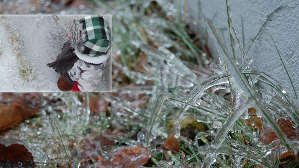 zackary checkin out da frozen blades of grass