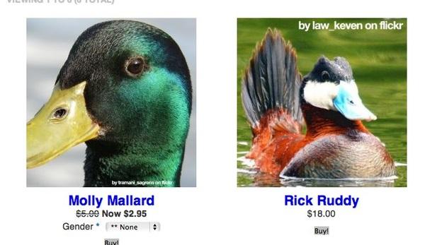 eend kopen?