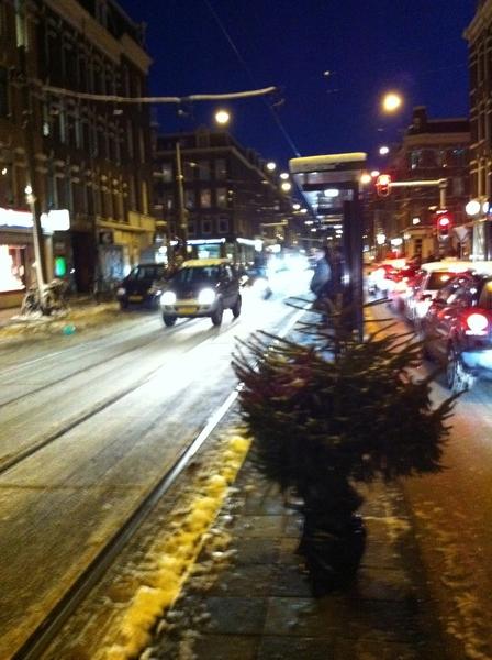 Groot avontuurtje. Gaat vragen of de kerstboom in de tram mee mag.