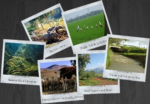 Forum Komunitas Pertanian Indonesia Agroteknologi