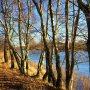 Vogelenzang -AWD- Heerlijk helder ,zonnig winterweer , goed voor een wandeling in de duinen. #buienradar
