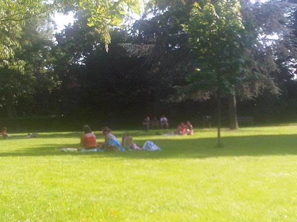 Gezinnetjes, studenten, wandelaars. Zomer in #OoginAlPark #Utrecht