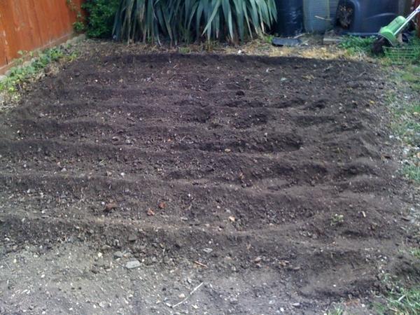 Dug garden