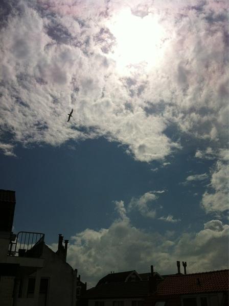 @ClaudiaMJS #vlissingen #zon