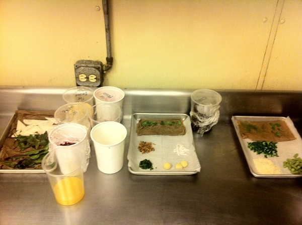 Tasting new dishes for next Topolo menu: here is part of Chef Brian Enyart's mise-en-place for the tasting