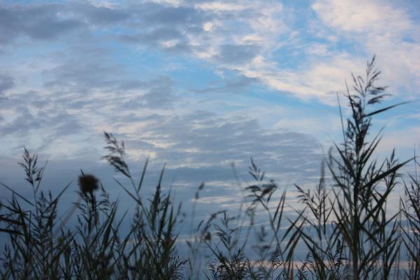 Medemblik- Vooroever 29/8/2015 #buienradar