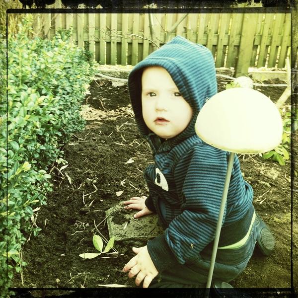 Fletcher of the day: gardening