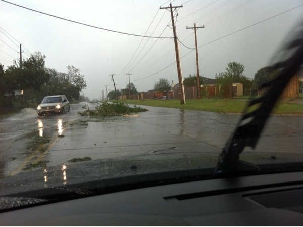 Trees power lines knocked down