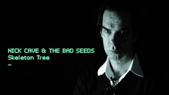 Some 'easy Friday evening listening' , pop music with #NickCave 's #SkeletonTree Lp      🎼.