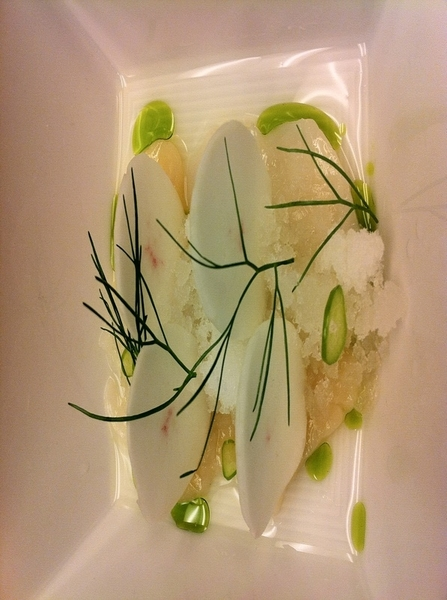 Poss new Topolo dish: spicy scallop aguachile w radish, fennel oil, serrano, lime