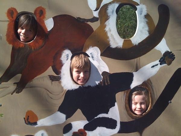 Spring in Artis Zoo!