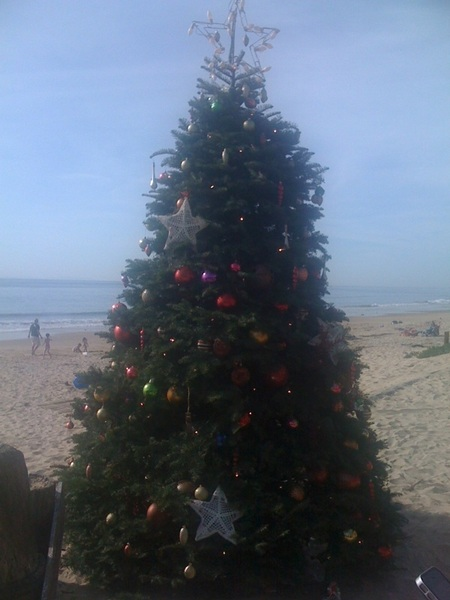 Christmas tree is up on the beach now at Crystal Cove Beach. Sweet.