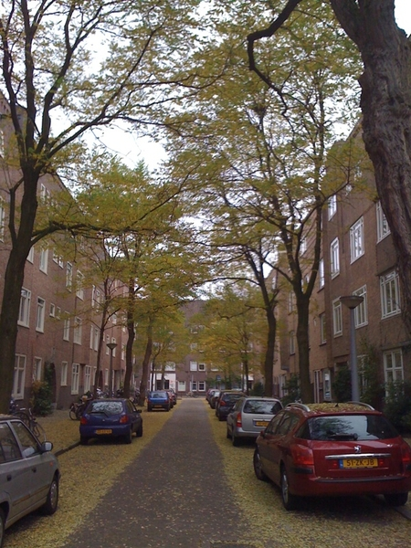 Loopt door mooi straatje in de herfst.