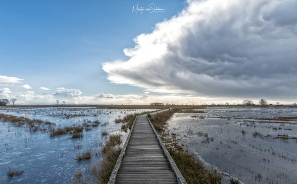 There comes the rain again, or is it snow? It was most certainly very cold! 📸 Nikon D500  #nikond500 #d500 #natuur #nature #ngc #holland #winter #buienradar #natuurmonumenten #nikon #iamnikon #ig_nikon #bestofnetherlands #Nederland #dutch #dwingelderveld #natuutfotografie #coolshot #cloudporn #skies #clouds #cloud #awesome #weather #blue #ice