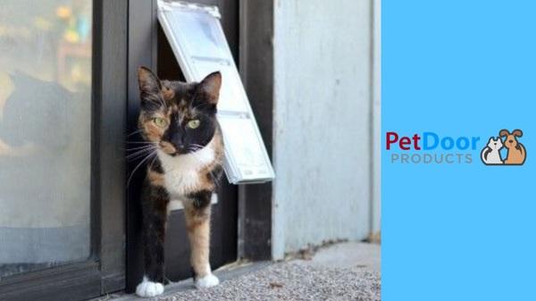 Benefits of a Sliding Glass Door Cat Door