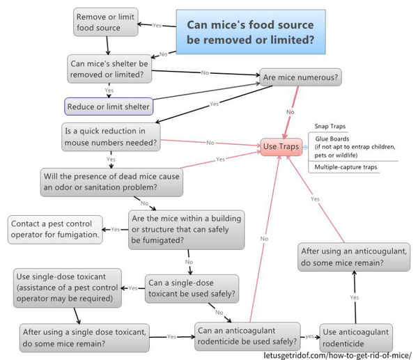 How to get rid of mice flow chart