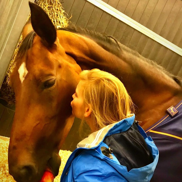 Finn arrived safe & sound @ Liege today 😊 Just one more kiss goodnight 🌙😘💤 And have a safe trip to @tryon2018 tomorrow ✈️💙 See you in the USA😍 #liege #horseinn #findsley #onourwaytotryon #twohearts #equestrian #safeflight #goodnight #kiss #love