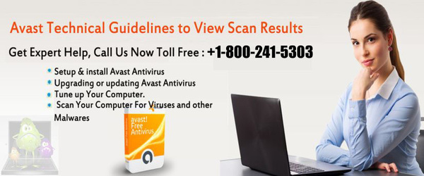 Contact Avast Support Number for solve common errors in USA