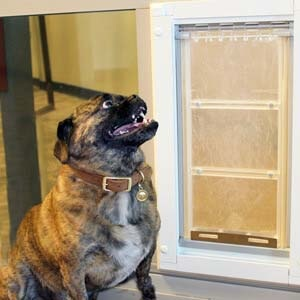 Pet Door Products provides a replacement sliding glass pet door insert that fits right into your existing vinyl door frame making life easier for pet owners. http://bit.ly/2HmGreM