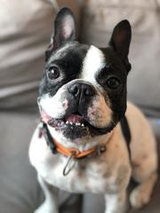 Smileeeee