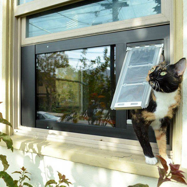 Pet Door Products makes life easier for our feline friends by providing a cat door window insert that fits right into existing sash windows. http://bit.ly/2IObFMH