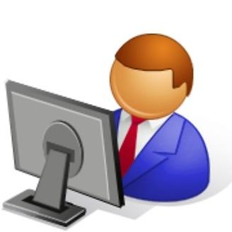 Professional Microsoft Access Developer
