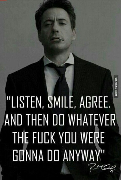 Robert Downy Jr. Quotes
